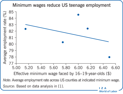 Minimum wages reduce US teenage employment