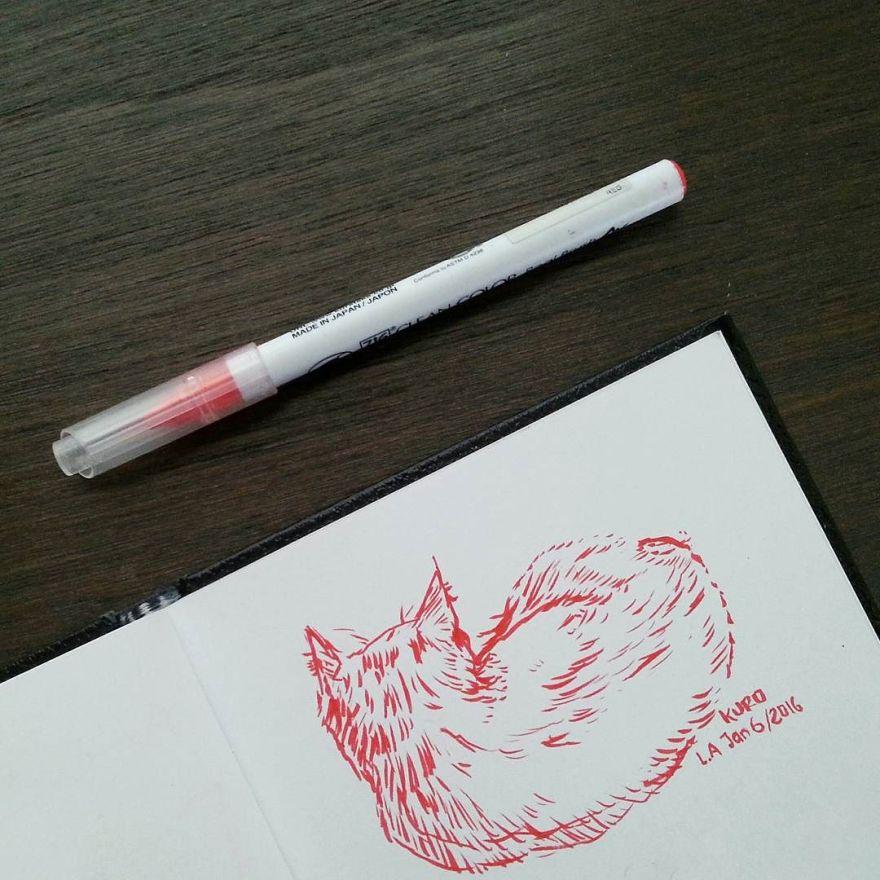 sketching my cat