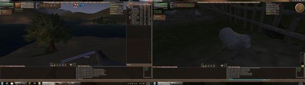 Dual Monitor Wurm Online