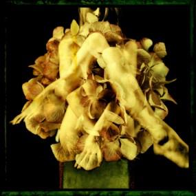 Nude&Flowers 05