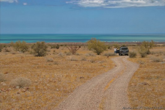 The fossil bed road