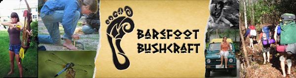BF-Banner