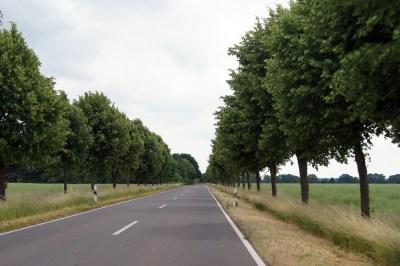 road-1178666_1920