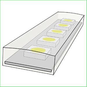 LED strips voor buiten