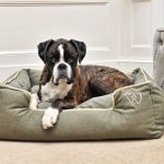 Large Luxury Dog Beds Accessories Uk Wolfybeds