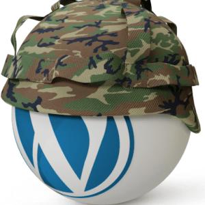 WordPress Security – Güvenlik
