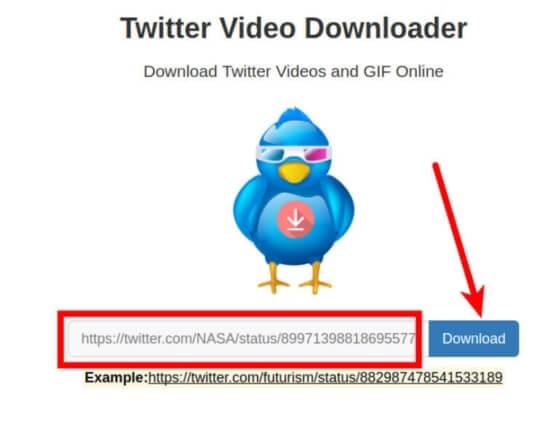 download-input-box-twitter