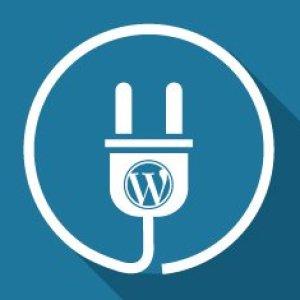 WordPress eklenti yapımı