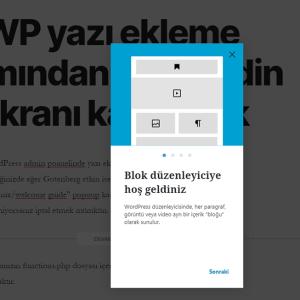 WP yazı ekleme kısmından hoş geldin ekranı kaldırmak