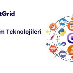 TR yazılım teknolojileri raporu [2020]