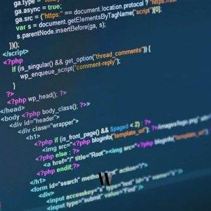 WordPress kullanıcı rolüne göre fonksiyon