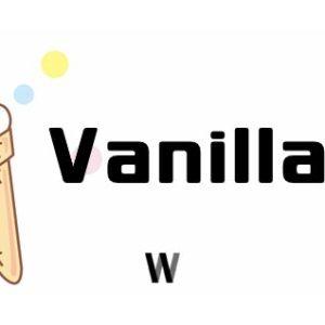 Vanilla JS nedir?