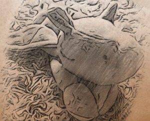 Eliot - Kuschel-Drache - Wolken Sternchen - Lese- und Hörspielgeschichten für Kinder und ihre Eltern