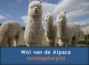 Informatie over Wol van de Alpaca