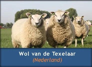 Informatie over Texelse Schapenwol