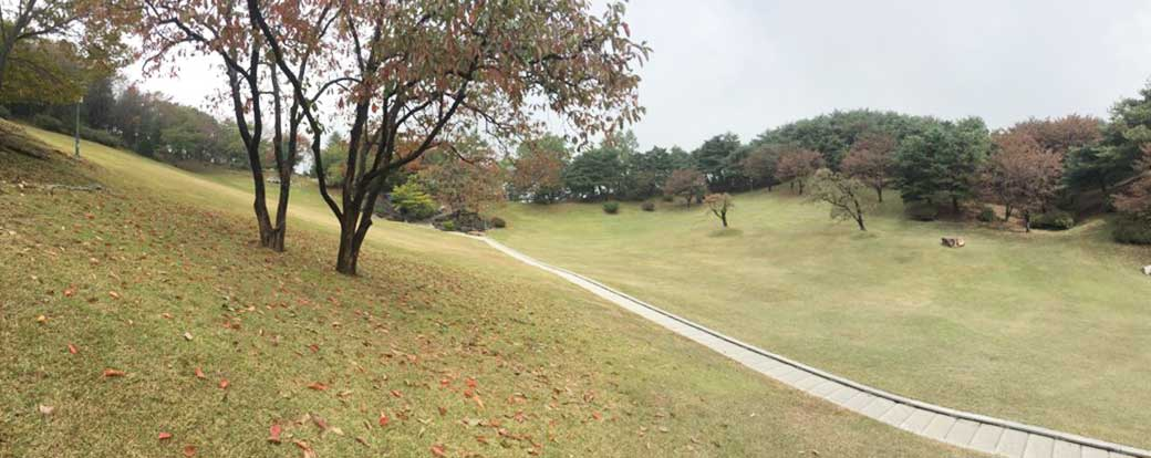 The lawn sanctuary in Wolmyeongdong during autumn!