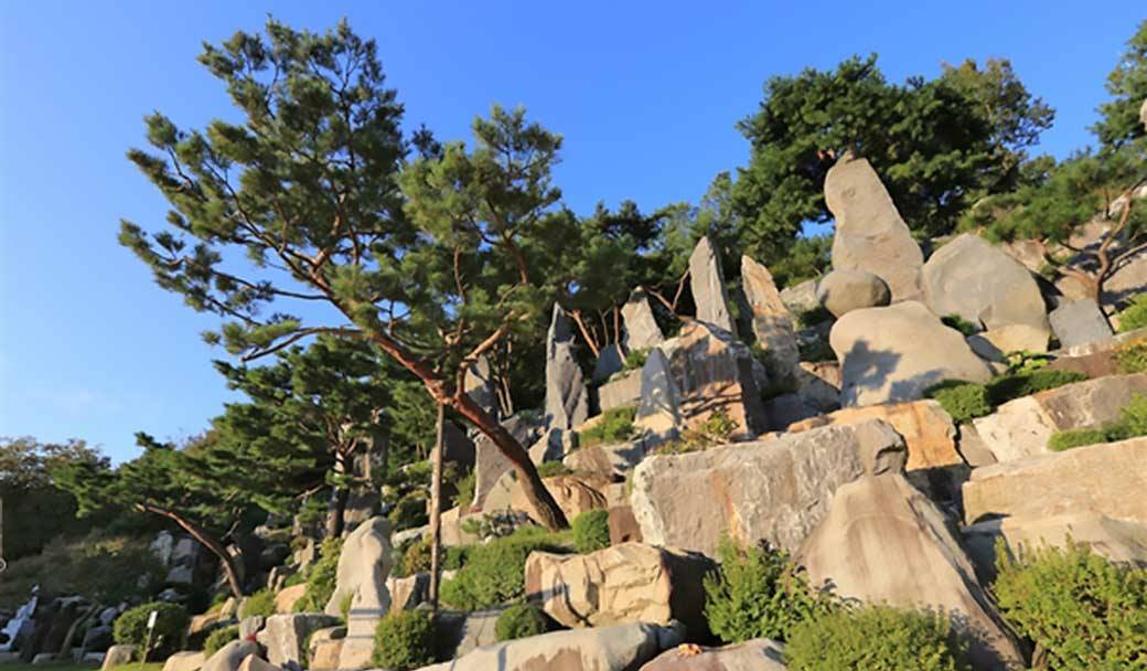 Trees planted within the rock landscape in Wolmyeongdong jut out to give the rock landscape a 3-D feel