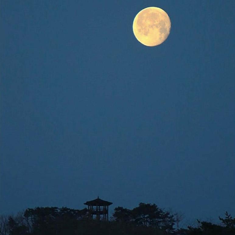Huge moon hangs over the pavilion on Gamram Mountain in Wolmyeongdong.