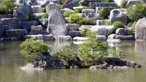 rock island in Wolmyeong lake which has small trees growing on it