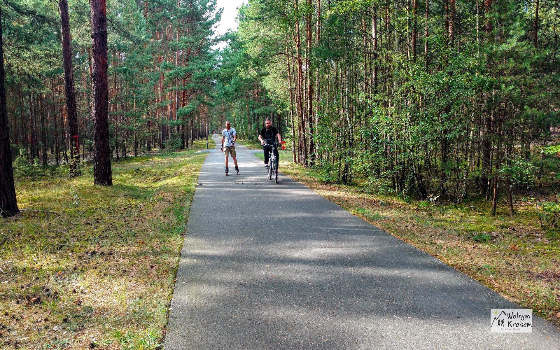 Trasa rowerowa Flaeming-Skate niemcy