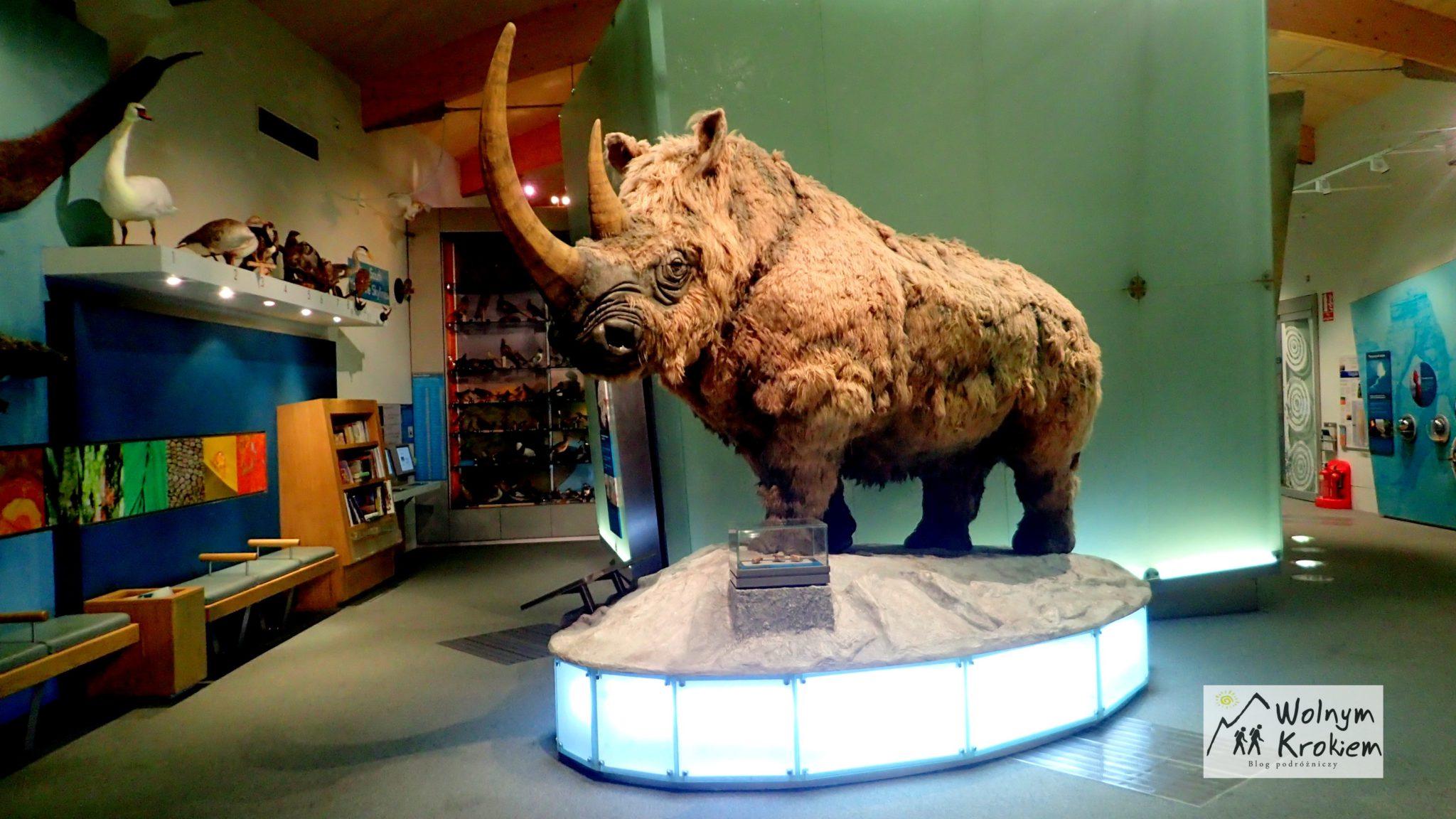 Muzeum Weston Sheffield