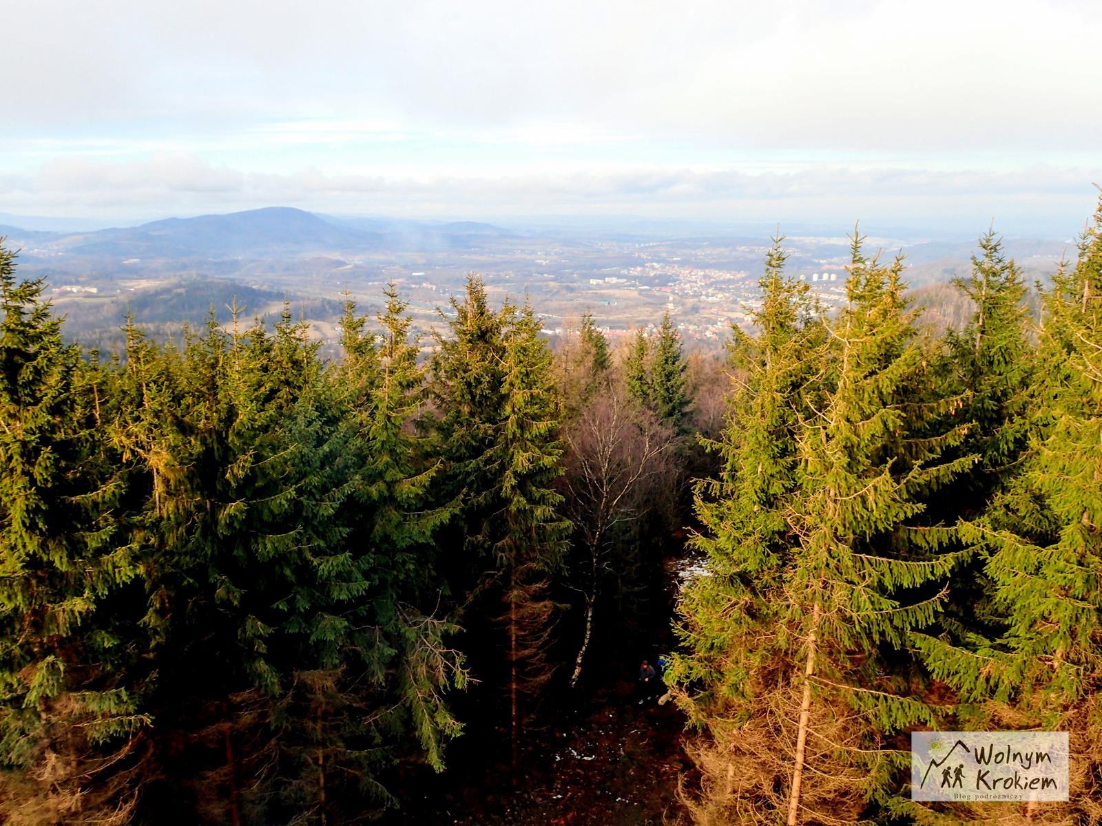 Szlak na Borową z Jedliny-Zdrój