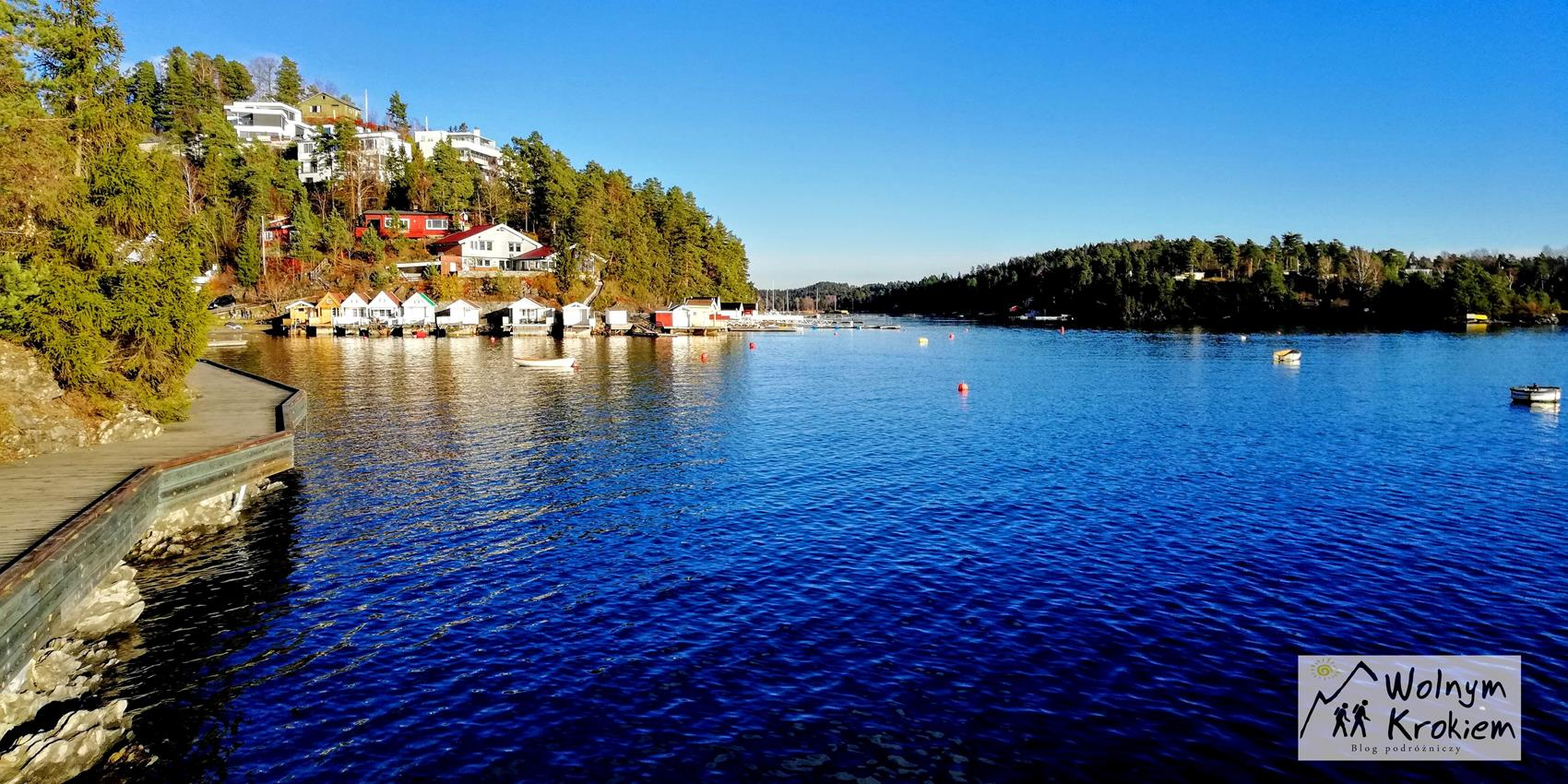 Nesoya Oslo