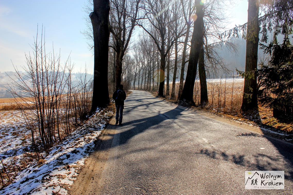 Szlak na Turzec - skręt przy wiosce na szlak zielony