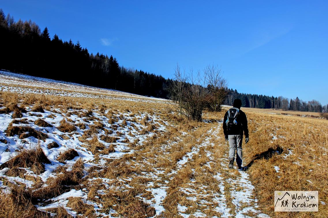 Szlak Zielony na górę Turzec z wioski