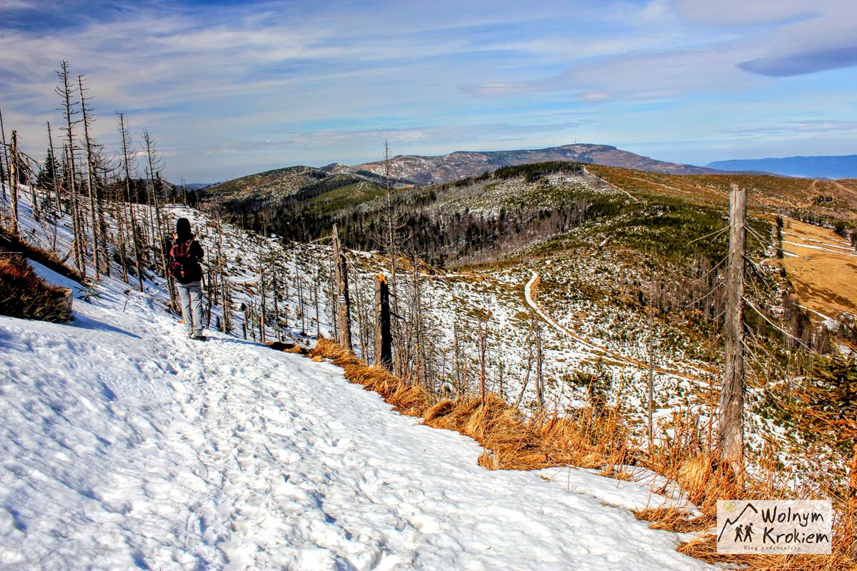 Szlak z Baraniej Góry na Magurkę Wiślaną i Gawlas