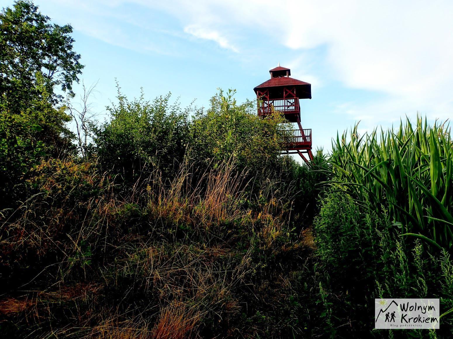 Kawia Gora Wieza widokowa