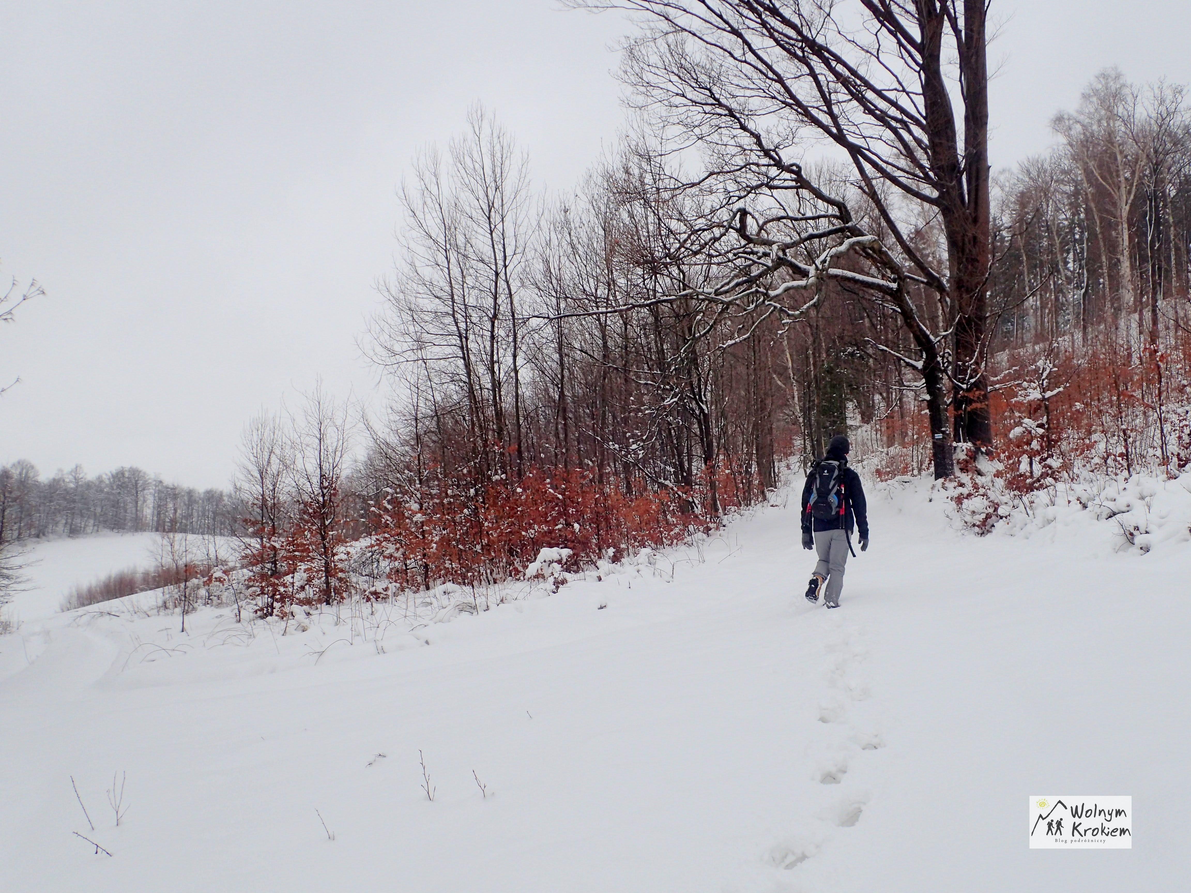 Szlak niebieski na Okole zimą