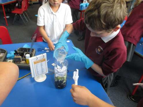Y3 - Compost Heaps