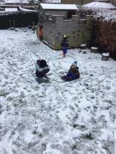 N - Snow