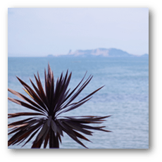 Hotel Seashore Resort