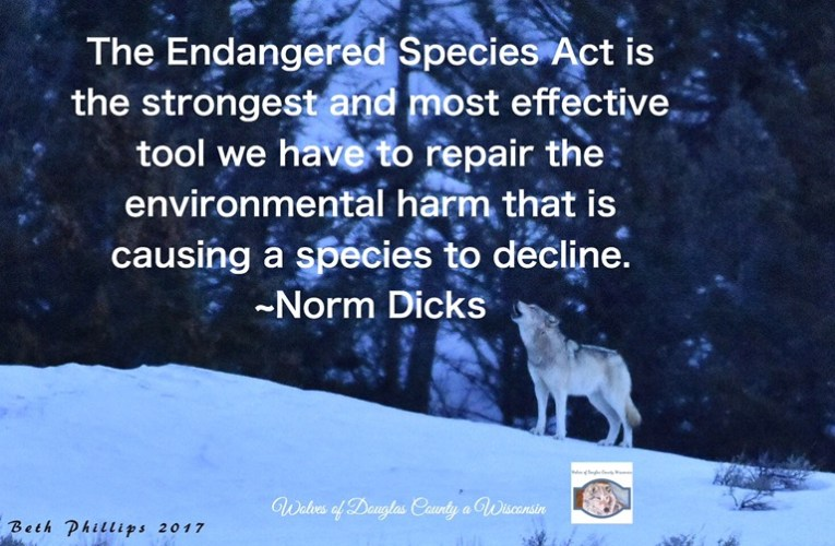 Endangered Species Act has protected imperiled species and critical habitats since 1973