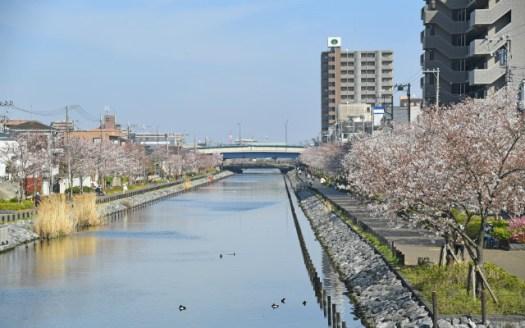 江戸川区の街並み