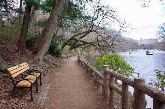 井の頭恩賜公園のベンチ