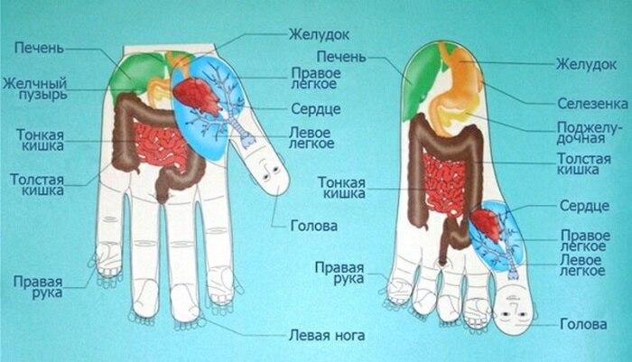 Су джок терапия как исцелить зрение. От боли в позвоночнике. Показания и противопоказания к терапии су-джок
