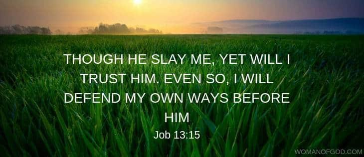 Job 13:15 verse image