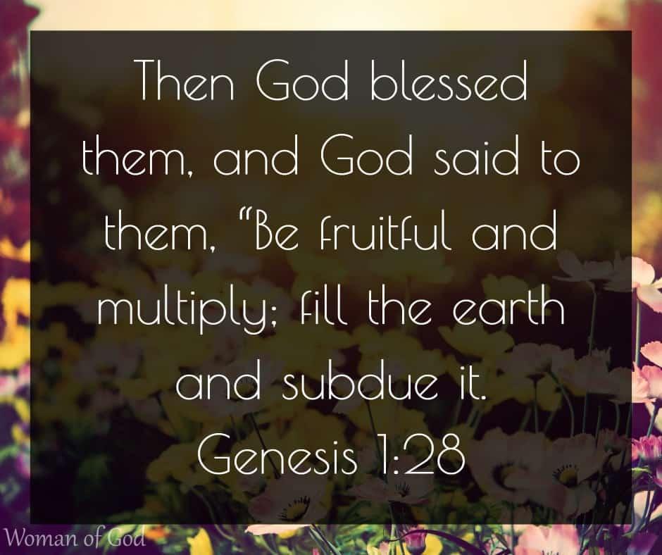 Genesis 1:28 Bible Verse