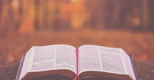 bible verses about