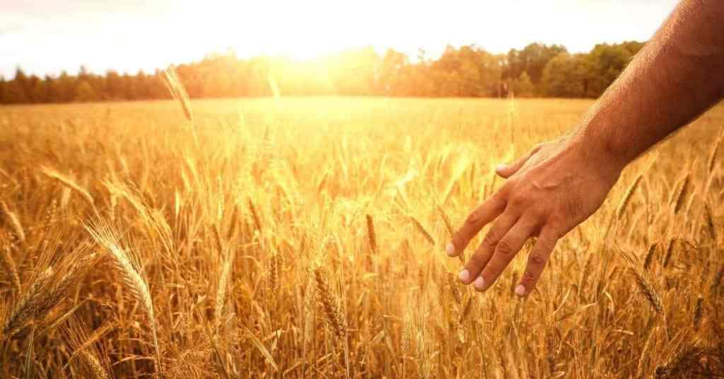Keys to Living Life More Abundantly