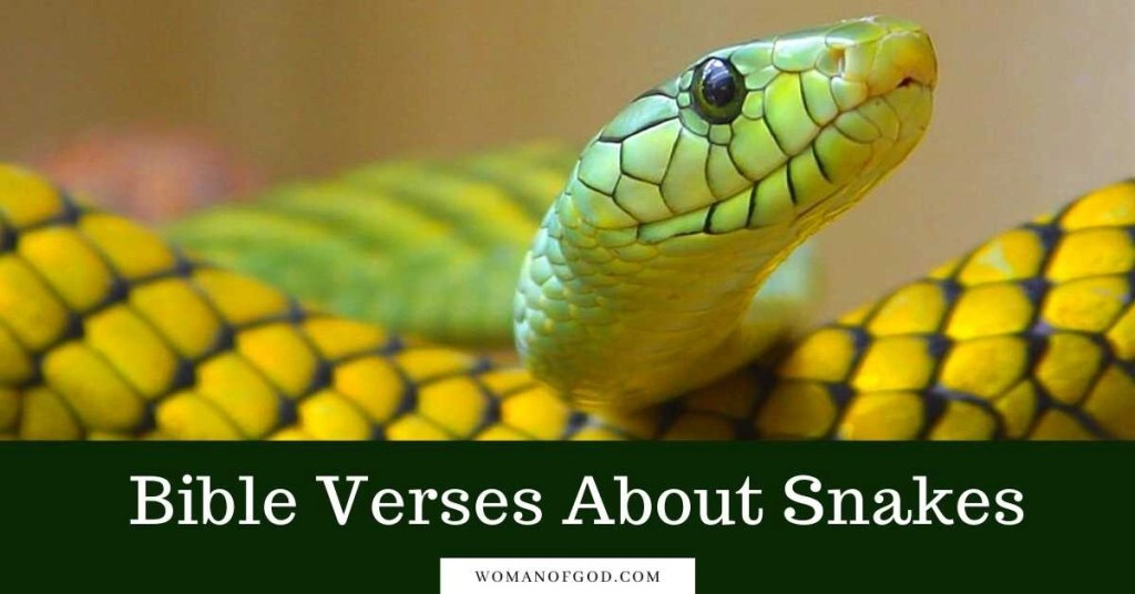 Bible Verses About Snakes