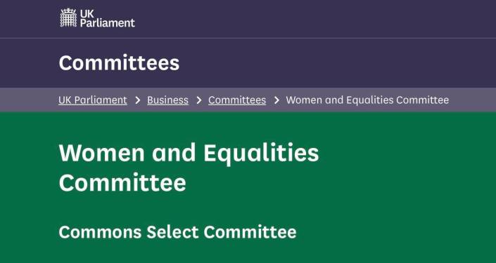 Image of Women and Equalities Select Committee webpage