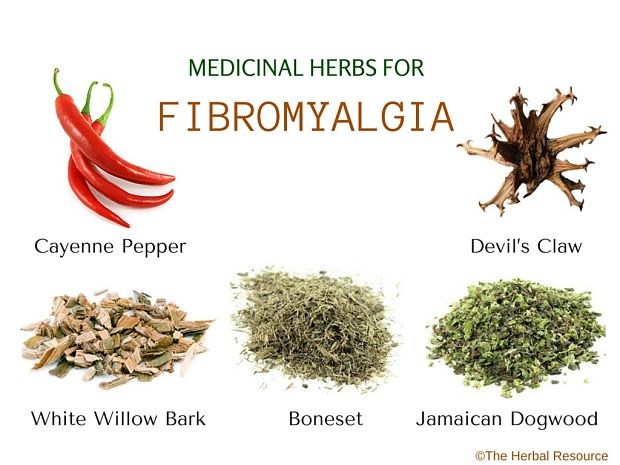 herbs-for-fibromyalgia2