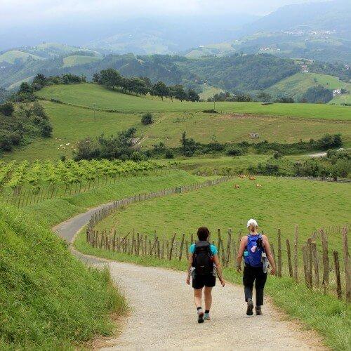 Camino Francés vs Camino del Norte