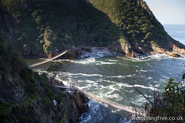 Suspension bridges at Tsitsikamma NP