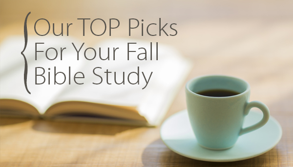5 New Bible Studies for Anyone