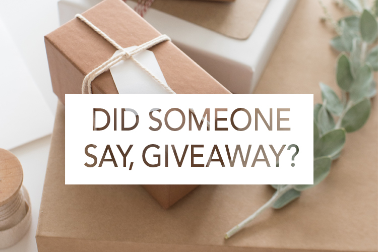 Bible Studies That Also Have Books Giveaway